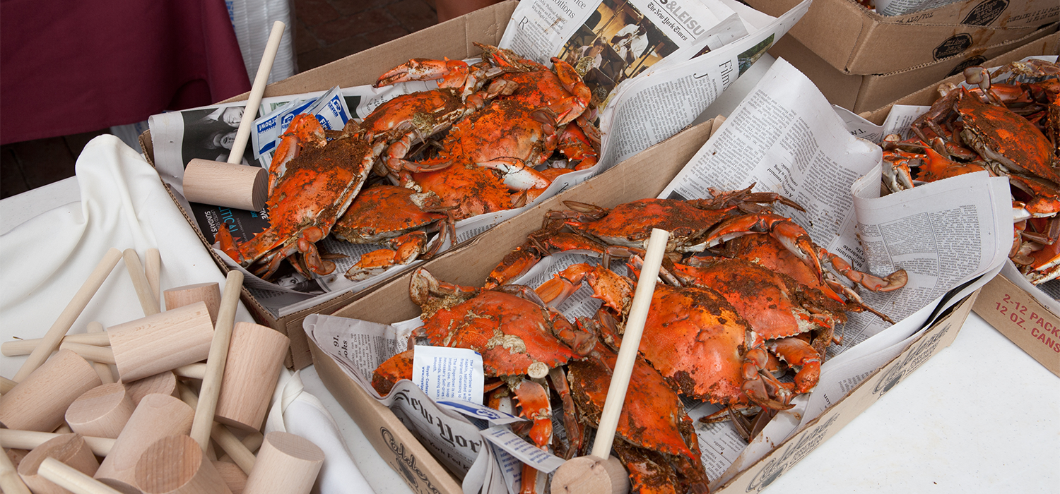 all you can eat crabs at the cape may mac Craft beer, Music & Crab Festival