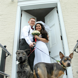 Bride and groom with 2 dogs at the cape may lighthouse