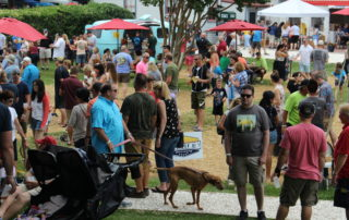 large crowd at the cape may mac Hops Festival