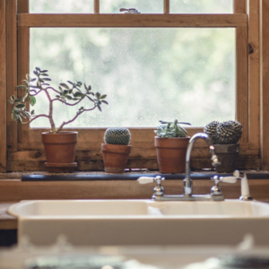 close up of a beautiful farm sink in front of a window with a wooden frame, and succulent plants on the ledge.
