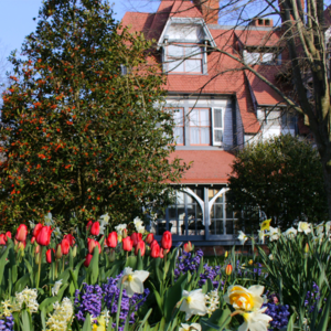 flowers in front of victorian house