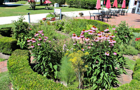 Physick Estate Garden in Cape May New Jersey