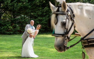 bride and groom with horse in the foreground